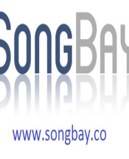 Songbayteam