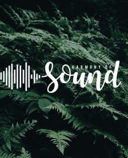 Harmony of Sound